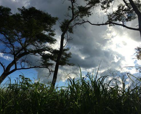 Tag am See in Afrika - Sonntagsbrunch #5