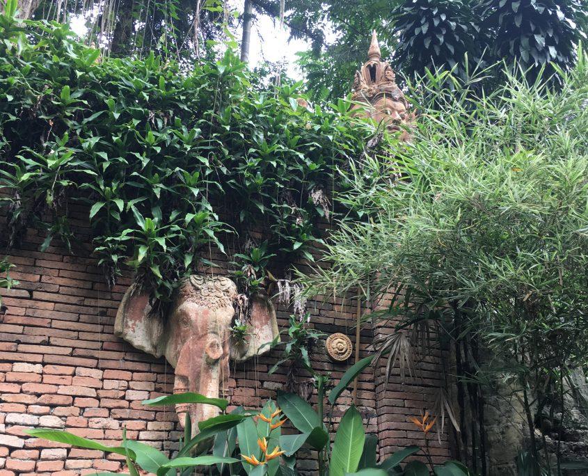 Chiang Mai - Wat Pha Lat #5